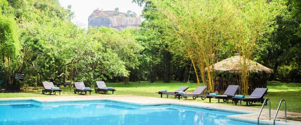 Swim in the shade of Sigiriya at the Sigiriya Village Hotel