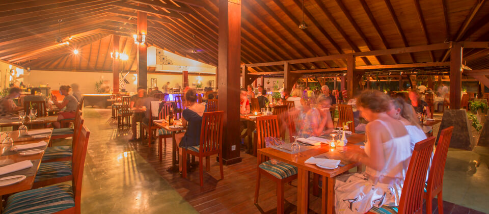 Relaxed dining space at the Golden Palms Restaurant in Beruwala